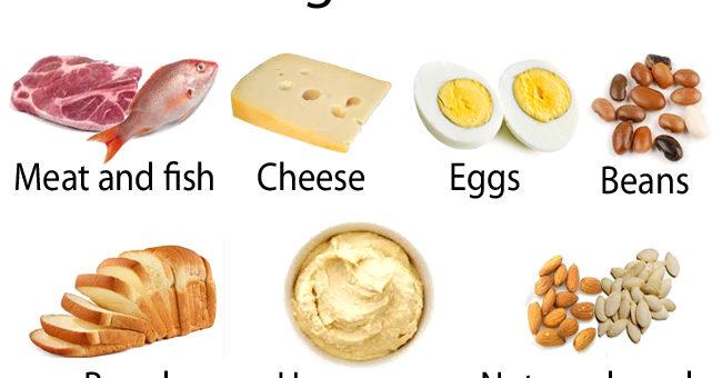protein bílkoviny