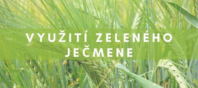účinky zeleného ječmene