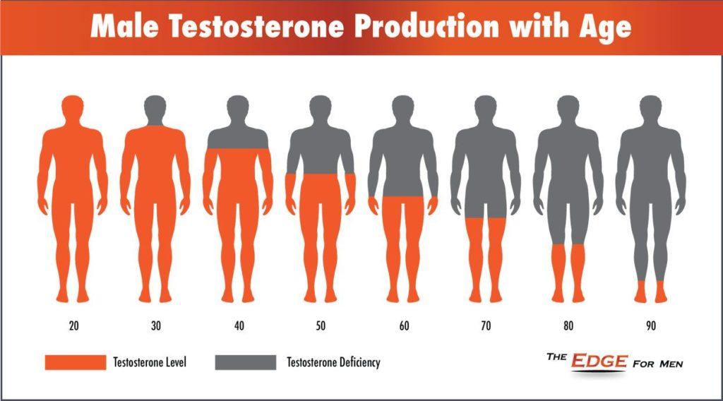 Testosteron graf - hladina testosteronu s věkem klesá