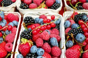 ovoce v protinové dietě
