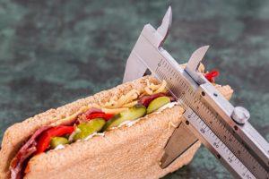 co to je proteinová dieta