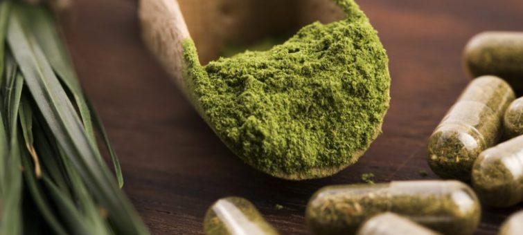 zelený ječmen a jeho výhody