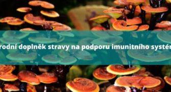 Přírodní doplněk stravy na podporu imunitního systému