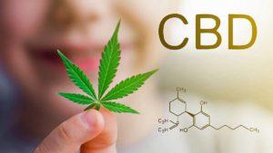 CBD vliv na zdraví